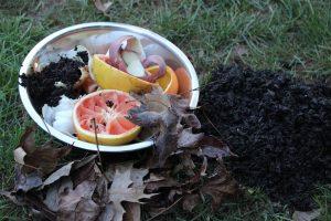 Garden Soil Enrichment –Teach One Reach One